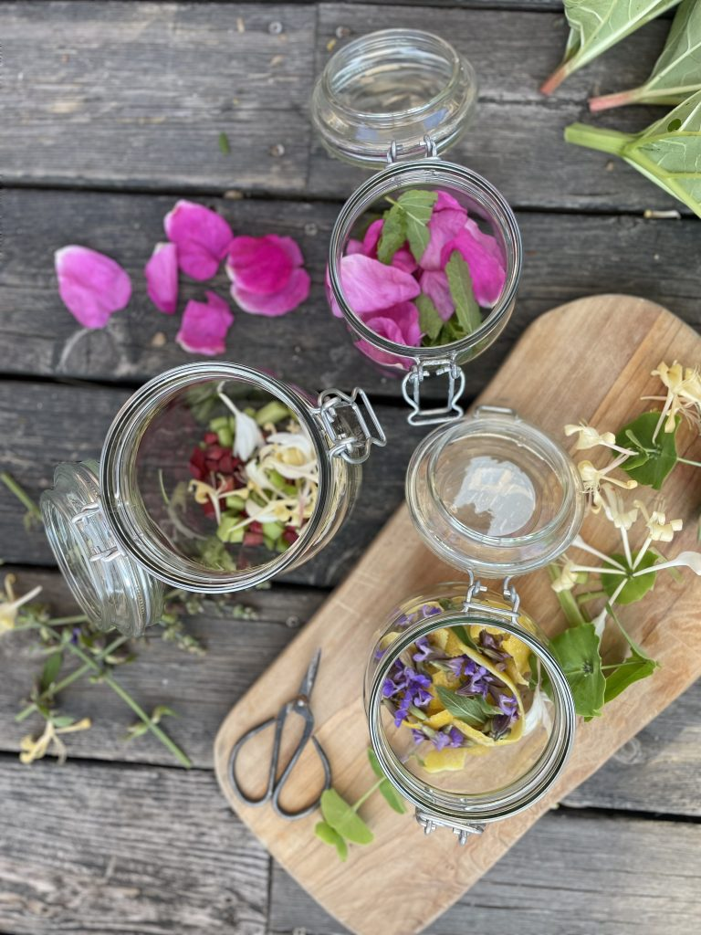 Snaps på sju sorters blommor