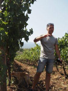 winetable-etna